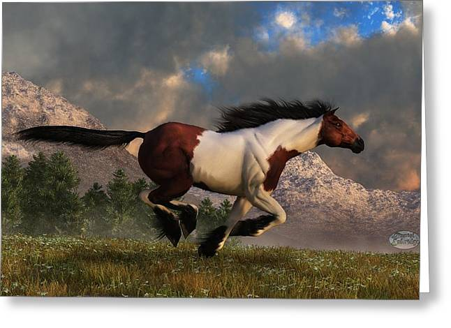 Wild Horses Greeting Cards - Pinto Mustang Galloping Greeting Card by Daniel Eskridge