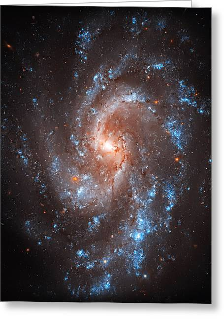 Constellations Greeting Cards - Pinwheel Galaxy Greeting Card by The  Vault - Jennifer Rondinelli Reilly