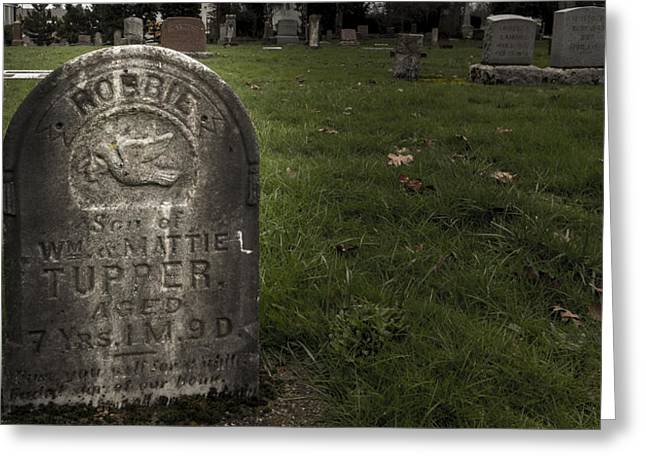 Final Resting Place Greeting Cards - Pioneer Grave Greeting Card by Jean Noren