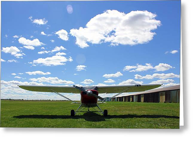 Tail-draggers Greeting Cards - Piper Clipper on a Grass Strip Greeting Card by Sara Kirk