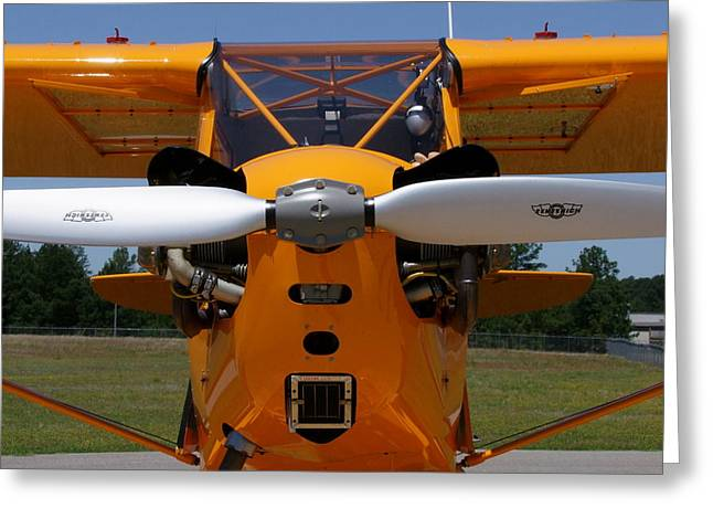 Tail-draggers Greeting Cards - Piper Cub Greeting Card by Phil Rispin