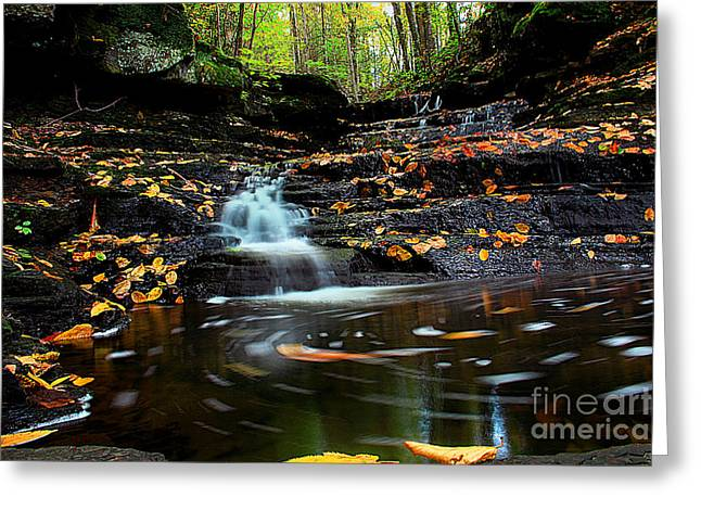 Fall Photographs Greeting Cards - Pipestem Falls Greeting Card by Melissa Petrey