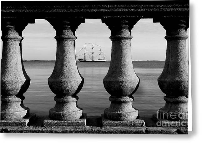 Tampa Bay Greeting Cards - Pirate ship on the Bayshore Greeting Card by David Lee Thompson