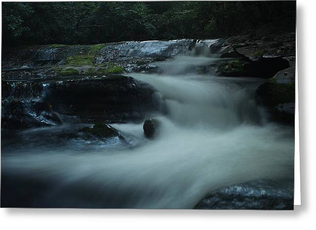 Pisgah Greeting Cards - Pisgah National Forest Greeting Card by Jessica Brawley