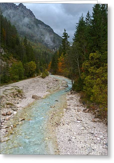 Mountain Valley Greeting Cards - Pisnica River - Autumn - Slovenia Greeting Card by Phil Banks