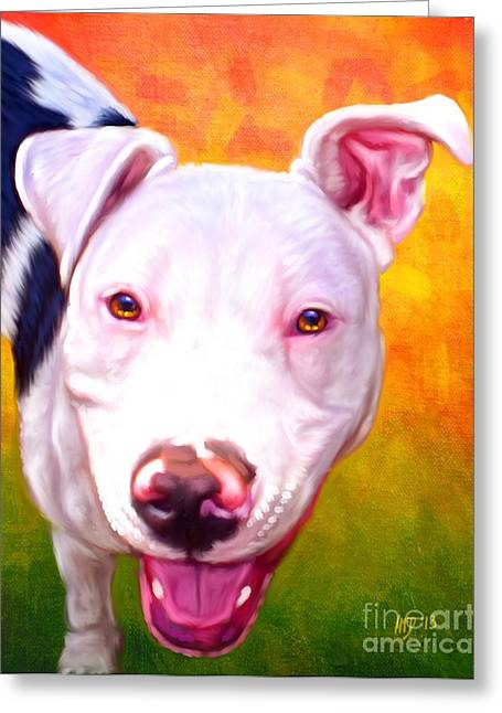 Pit Bull Poster Greeting Cards - Pit Bull Greeting Card by Iain McDonald