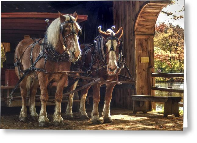 Horse Buggy Greeting Cards - Pit Stop Greeting Card by Joann Vitali