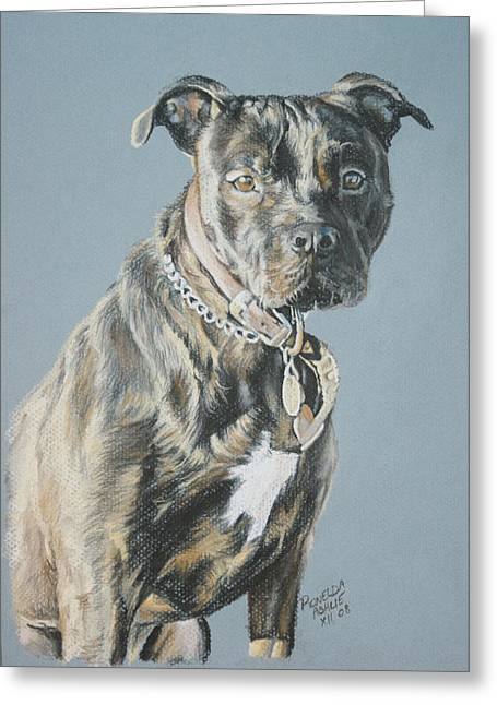 Commissions Pastels Greeting Cards - Pitbull Greeting Card by Ronelda Neufeld