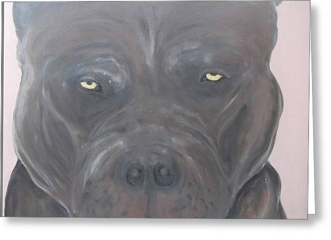 Guard Dog Paintings Greeting Cards - Pitbull terrier Greeting Card by Kat Oravcova