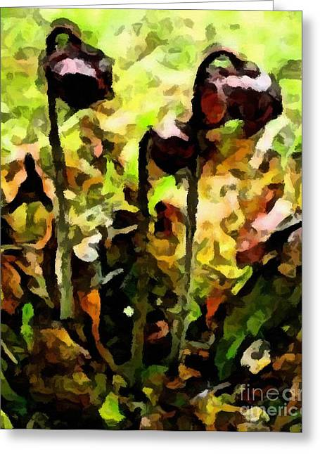 Pitcher Plant Abstraction Greeting Card by Barbara Griffin
