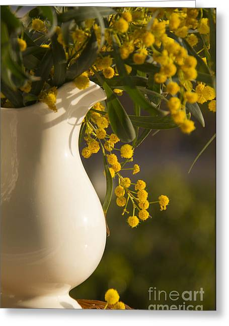 Old Pitcher Greeting Cards - Pitcher with verba flowers on the window Greeting Card by Rita Kapitulski