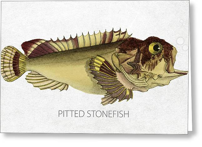 Aquarium Fish Digital Greeting Cards - Pitted stonefish Greeting Card by Aged Pixel