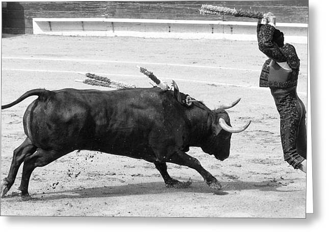 Mexican Fighters Greeting Cards - Placing Banderillas in Black and White Greeting Card by Clarence Alford
