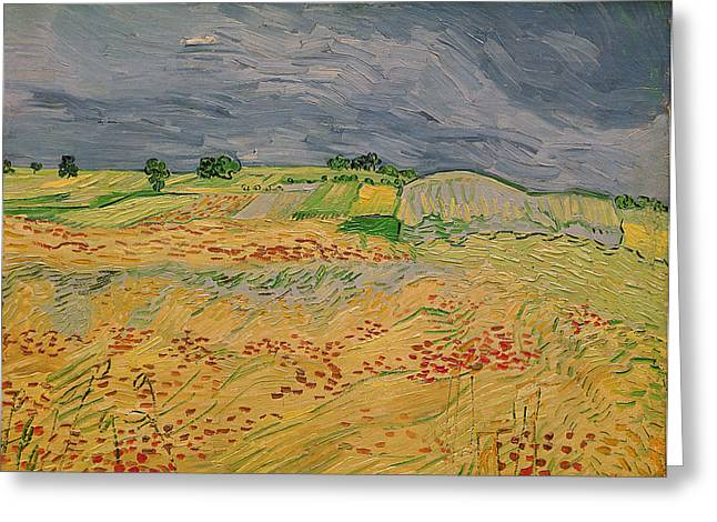 Cornfield Paintings Greeting Cards - Plain at Auvers Greeting Card by Vincent Van Gogh