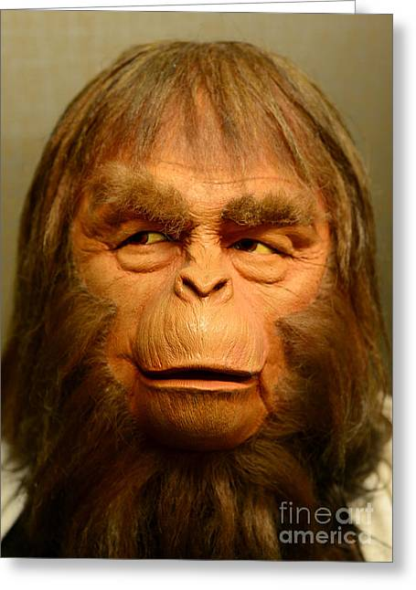 Stink Greeting Cards - Planet of the Apes - Dr. Zaius Greeting Card by Paul Ward