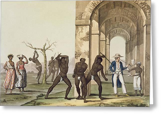 Plantation In Surinam, Illustration Greeting Card by G. Bramati