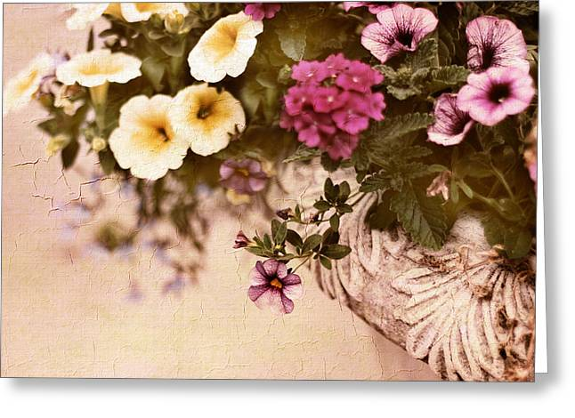 Flower Planter Greeting Cards - Planter Greeting Card by Jessica Jenney