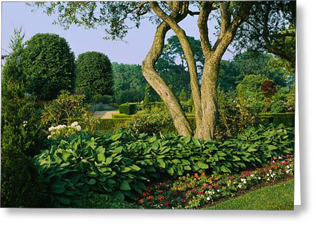 Bahai Greeting Cards - Plants In A Garden, Bahai Temple Greeting Card by Panoramic Images