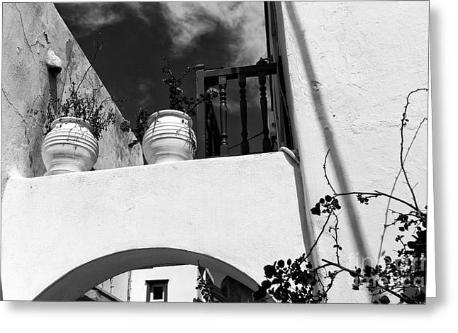 Ledge Photographs Greeting Cards - Plants on the Ledge in Mykonos mono Greeting Card by John Rizzuto