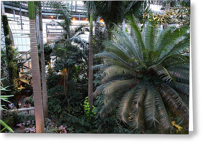 Plants - US Botanic Garden - 011311 Greeting Card by DC Photographer
