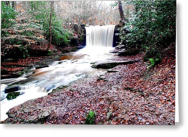 Wrexham Greeting Cards - Plas Power Waterfall Greeting Card by Brainwave Pictures
