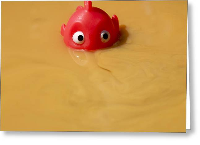 Plastic fish in some polluted water. Greeting Card by BERNARD JAUBERT