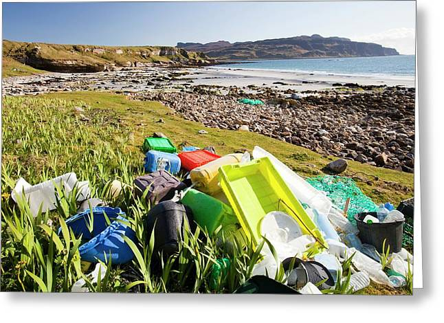Plastic Rubbish At The Singing Sands Greeting Card by Ashley Cooper