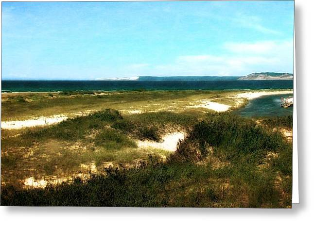 Sea Grass In The Sand Greeting Cards - Platte River Dunescape Greeting Card by Michelle Calkins