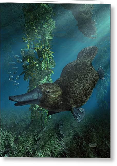 Platypus Greeting Card by Daniel Eskridge