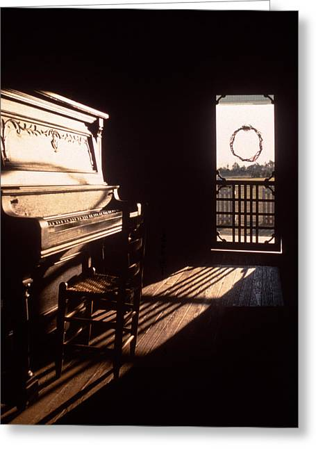 Screen Door Greeting Cards - Play Me Greeting Card by David and Carol Kelly
