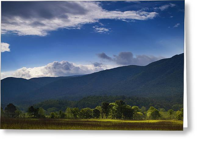 Cades Greeting Cards - Play of Light Greeting Card by Andrew Soundarajan