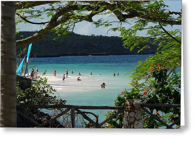 Beach Scenery Pyrography Greeting Cards - Playa Guardalavaca  Greeting Card by Richard Majeau