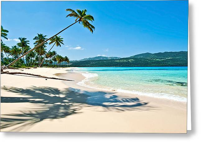 Rincon Greeting Cards - Playa Rincon Greeting Card by Renee Sullivan