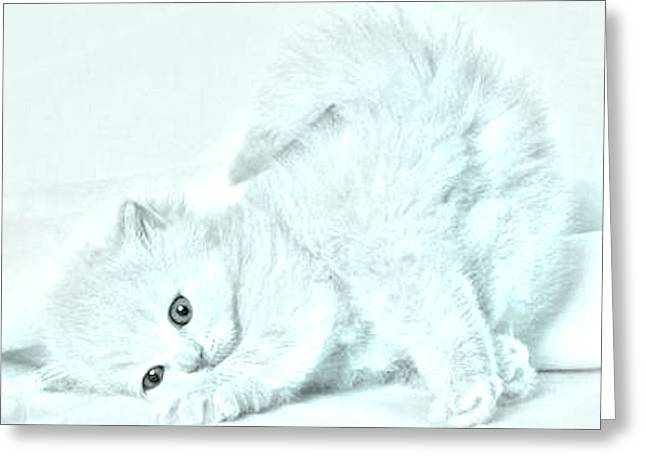Playful Kitty Greeting Card by J D Owen
