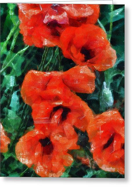Angelinavick Greeting Cards - Playful Poppies 5 Greeting Card by Angelina Vick