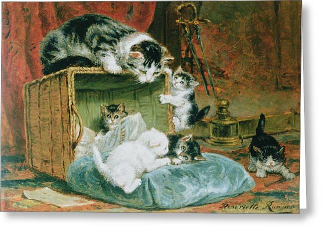 Playful Kitten Greeting Cards - Playtime Greeting Card by Henriette Ronner-Knip