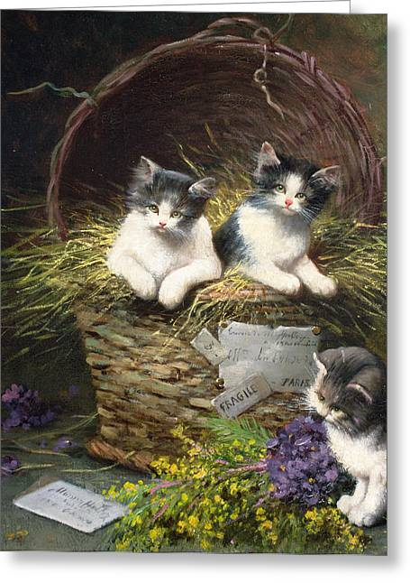 Playful Kitten Greeting Cards - Playtime Greeting Card by Leon Charles Huber