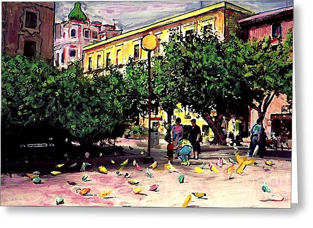 Pigeon In Park Greeting Cards - Plaza in Murcia Greeting Card by Sarah Loft