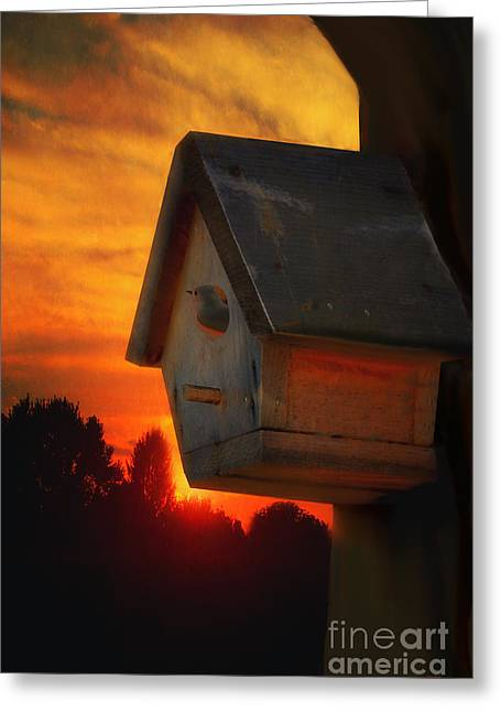 Thomas York Greeting Cards - Please Come Home Greeting Card by Tom York Images