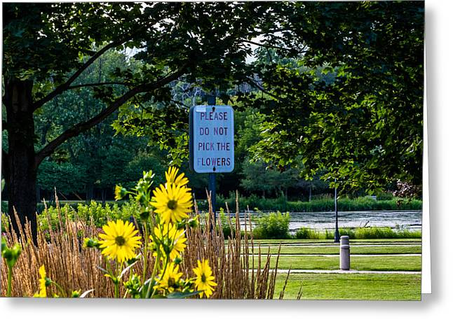 Riverwalk Greeting Cards - Please Do Not Pick The Flowers Greeting Card by Randy Scherkenbach
