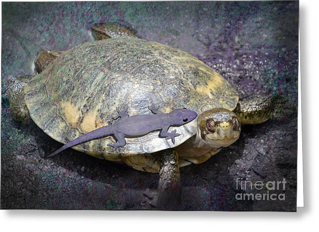 Lemke Digital Art Greeting Cards - Please Share The Journey Greeting Card by Audra D Lemke