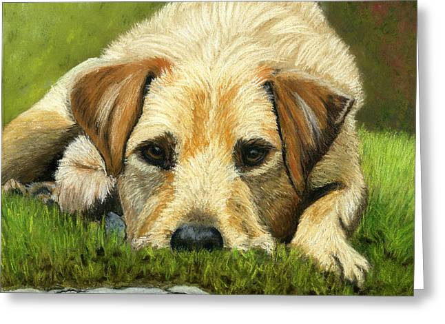 Puppies Pastels Greeting Cards - Please Throw my Ball Greeting Card by Sarah Dowson