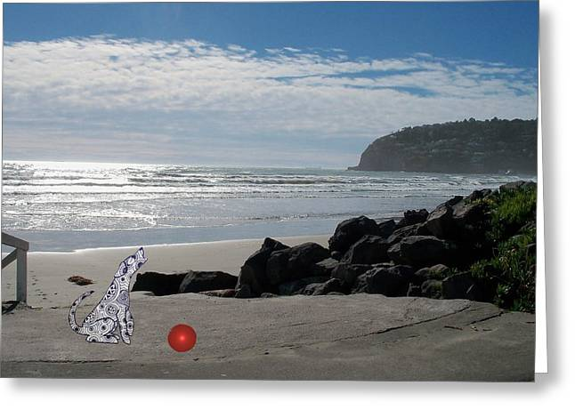 Sea Dog Greeting Cards Greeting Cards - PLEASE throw the ball Greeting Card by Nancy Pauling