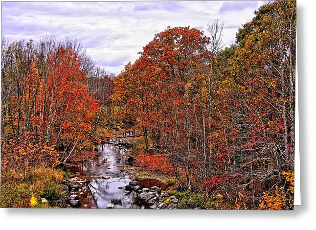 Reflections Of Trees In River Greeting Cards - Pleasing To The Eye Greeting Card by Kathleen Sartoris
