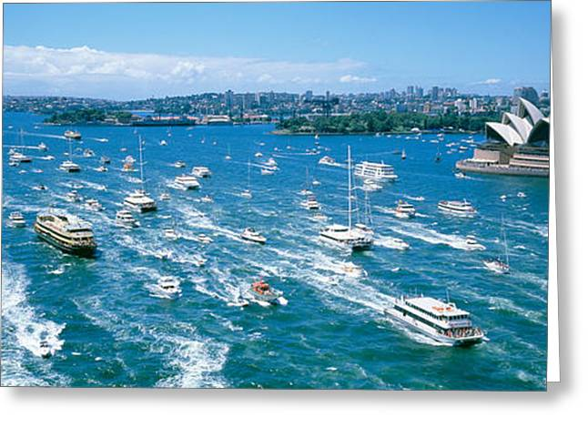 Many Greeting Cards - Pleasure Boats, Sydney Harbor, Australia Greeting Card by Panoramic Images