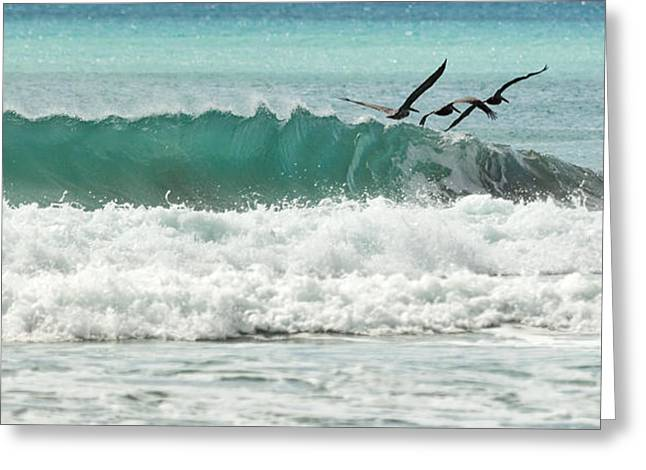 Blue Green Wave Greeting Cards - Pleasure Cruise Greeting Card by Michelle Wiarda