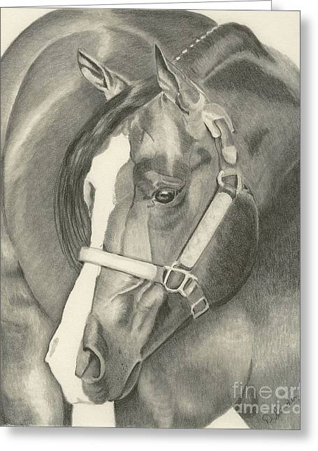 Pleasure Horse Greeting Card by Denise Gordon