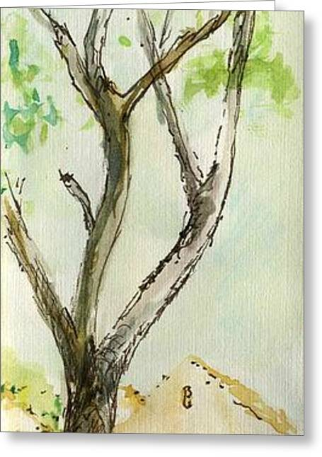 Sketchbook Greeting Cards - Plein Air Sketchbook. Camarillo Califronia 2011. A grand tree in Constitution Park  Greeting Card by Cathy Peterson
