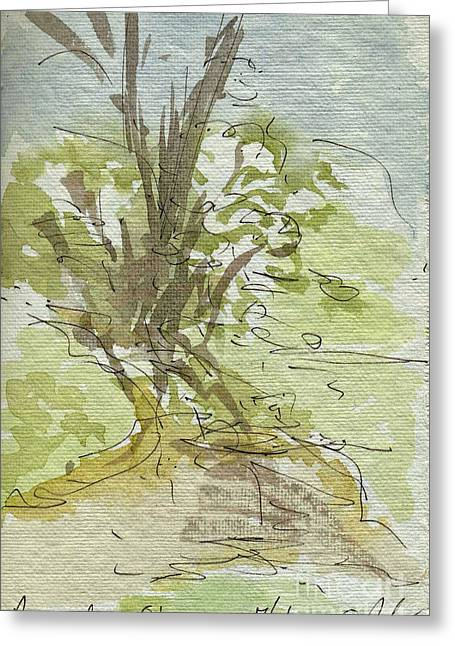 Sketchbook Greeting Cards - Plein Air Sketchbook. Rancho Ohaco. Ojai California July 7. 2012. Gina Married Ryan under this tree Greeting Card by Cathy Peterson