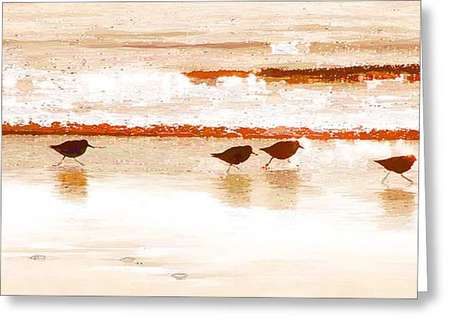 Seabirds Greeting Cards - Plovers on a Mission Greeting Card by Allan Van Gasbeck